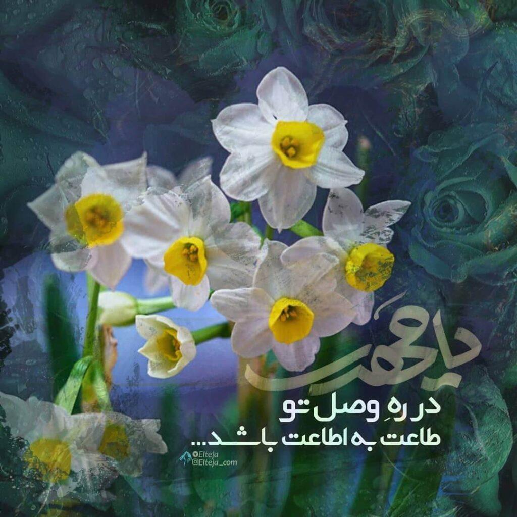 عکس نوشته گل