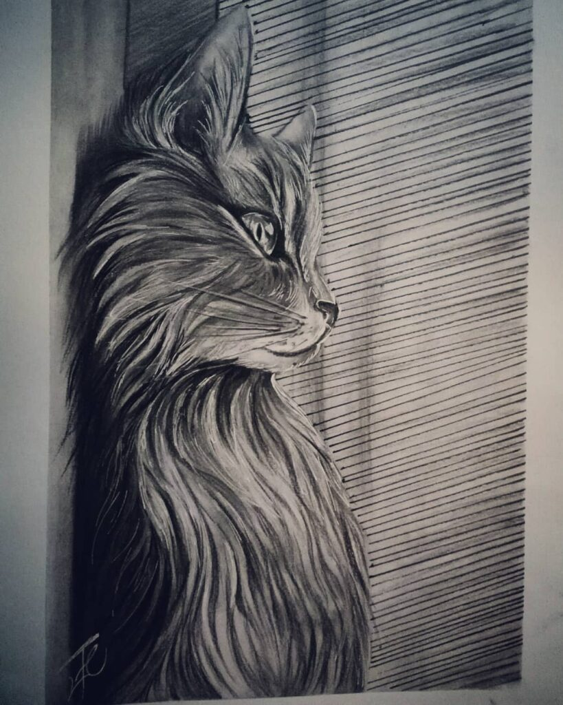 عکس نقاشی گربه