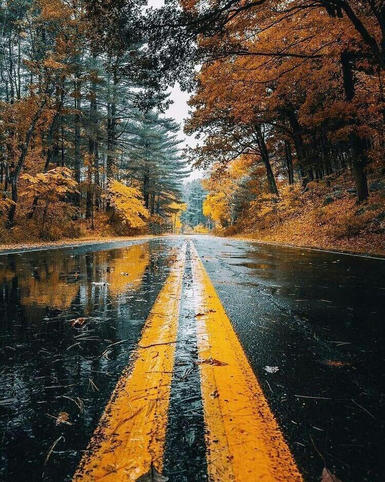 عکس پروفایل بارانی شیک