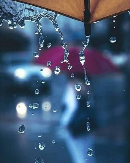 دانلود عکس پروفایل بارانی