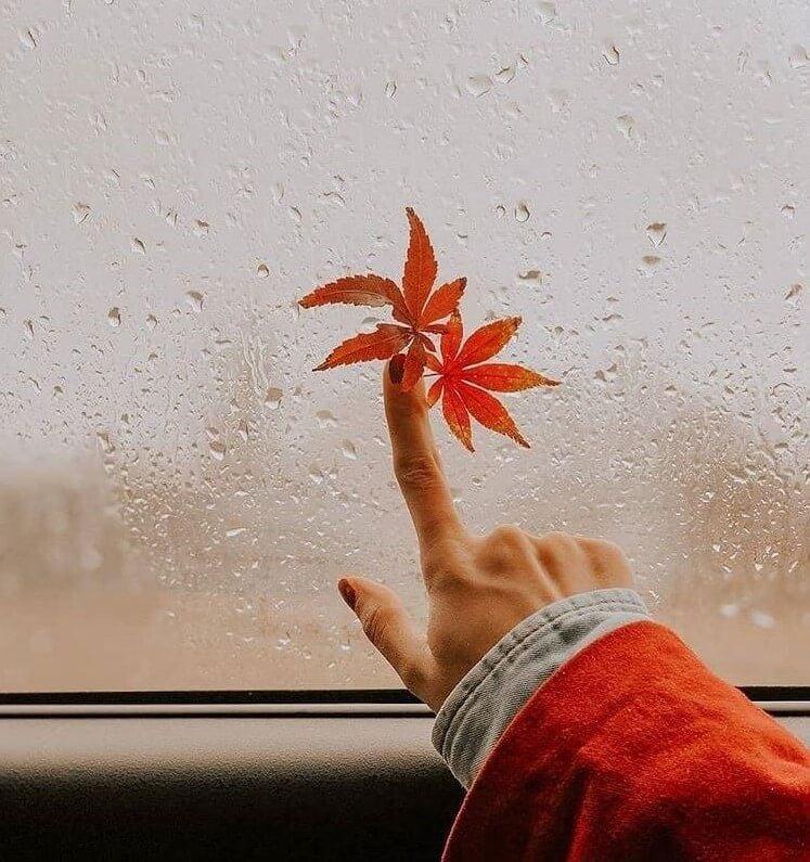 عکس پروفایل بارانی پاییزی