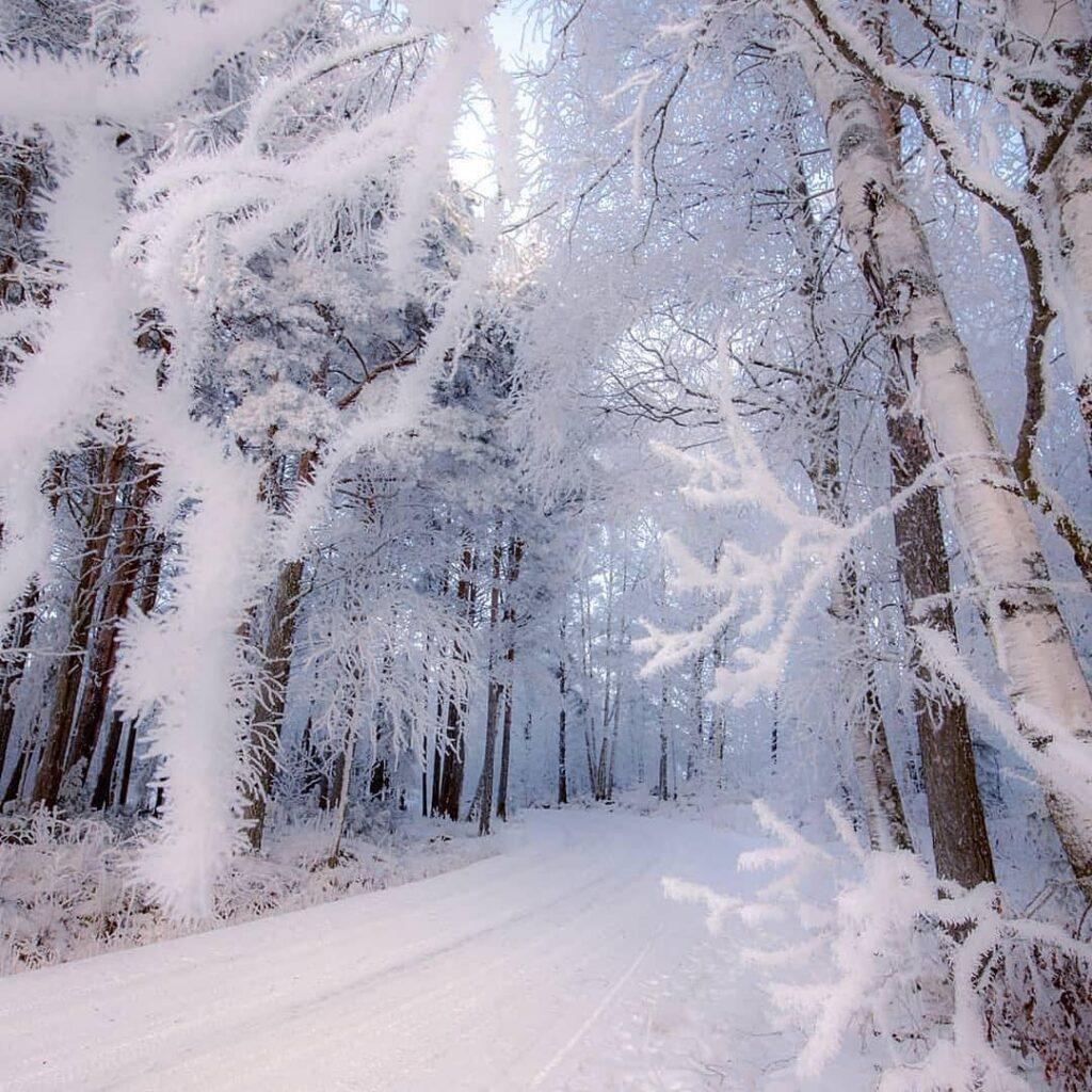 عکس پروفایل زمستانی برفی
