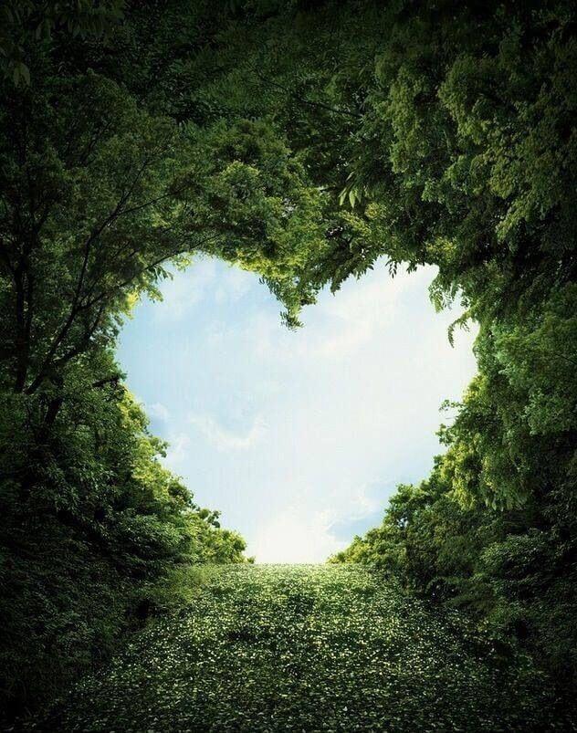 عکس پروفایل طبیعت عشق