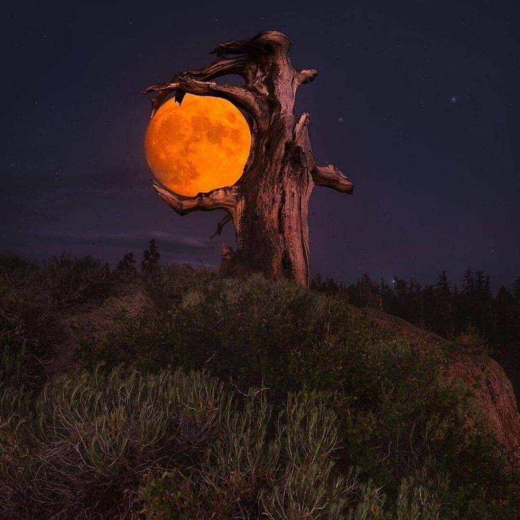 عکس پروفایل ماه
