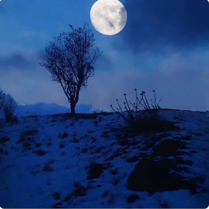 عکس پروفایل ماه آبی
