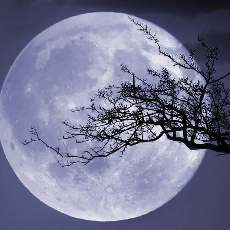 دانلود عکس پروفایل ماه