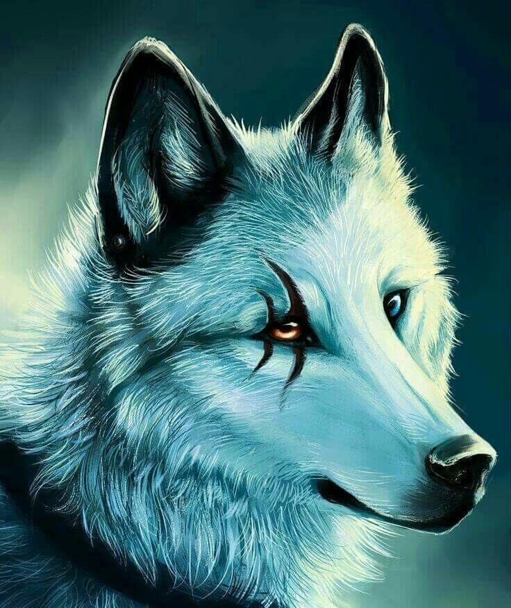 دانلود عکس پروفایل گرگ خفن