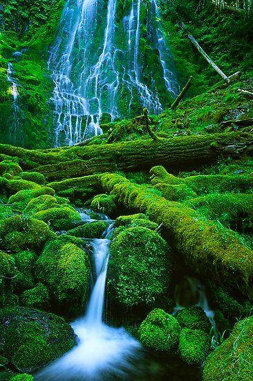 عکس طبیعت برای استوری