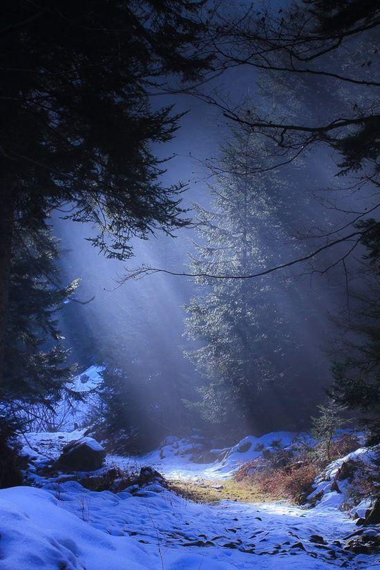 عکس استوری طبیعت